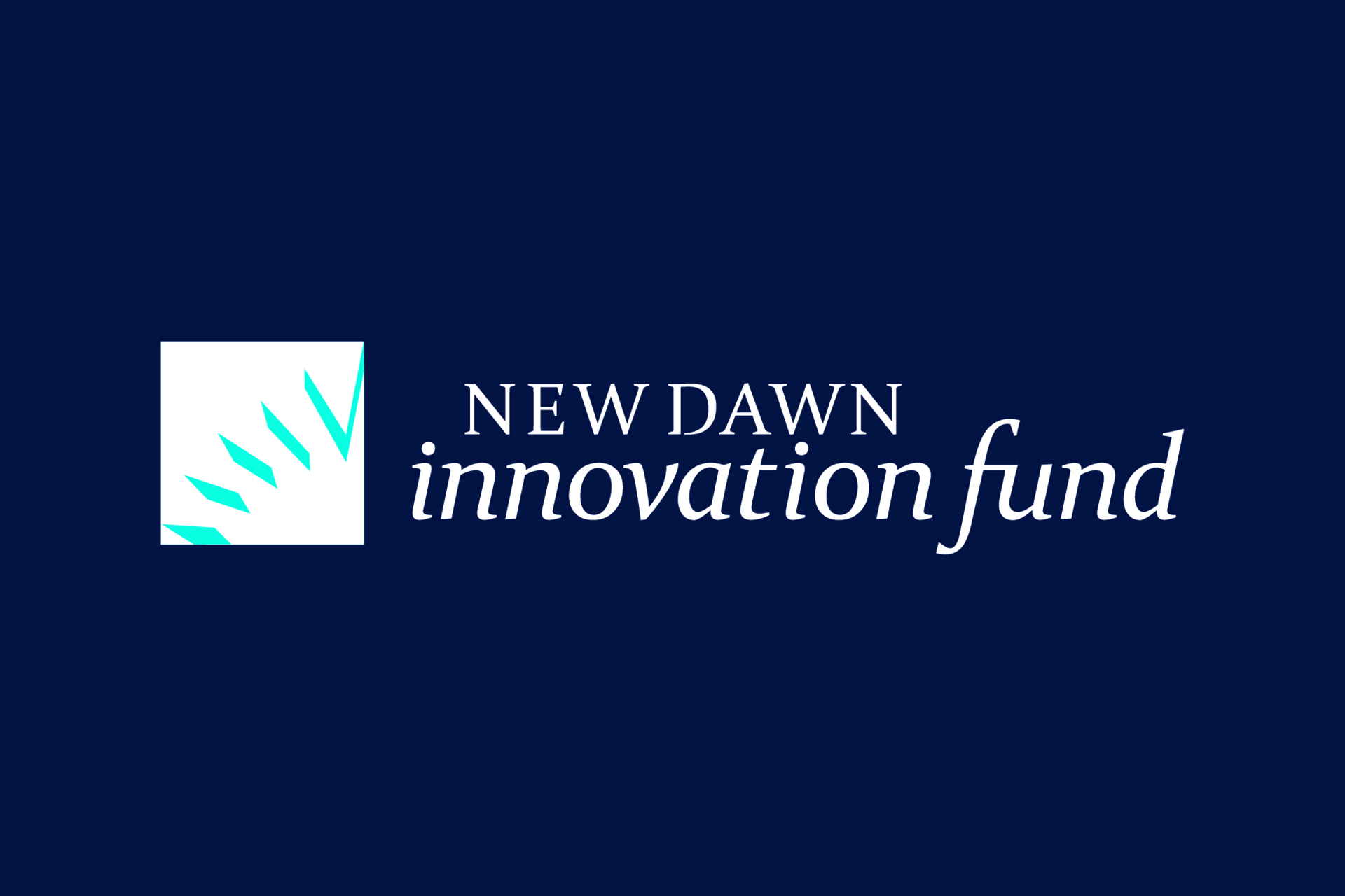 New Dawn Innovation Fund